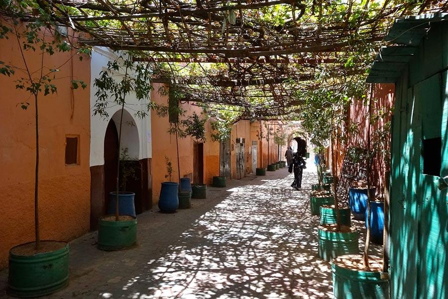 Quartiers de Marrakech Gueliz Medina Palmeraie