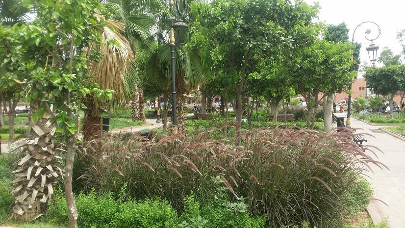 Jardins de marrakech les plus beaux visiter majorelle - Residence les jardins de majorelle marrakech ...
