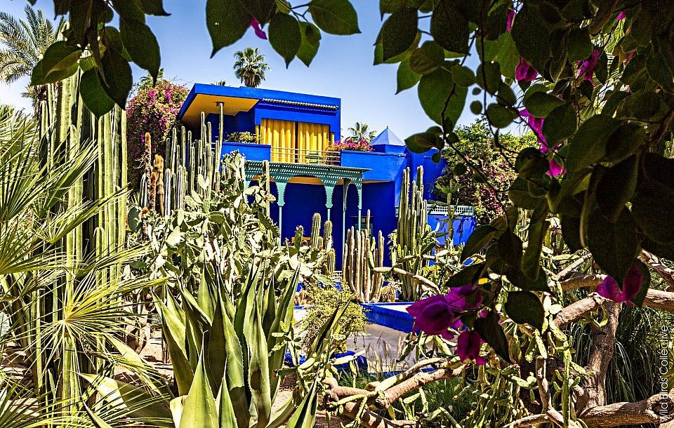 Maroc-Jardin-Majorelle Marrakech