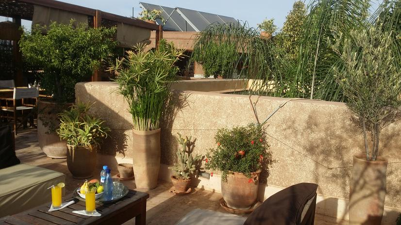 jardins de marrakech les plus beaux visiter majorelle agdal m nara koutoubia. Black Bedroom Furniture Sets. Home Design Ideas