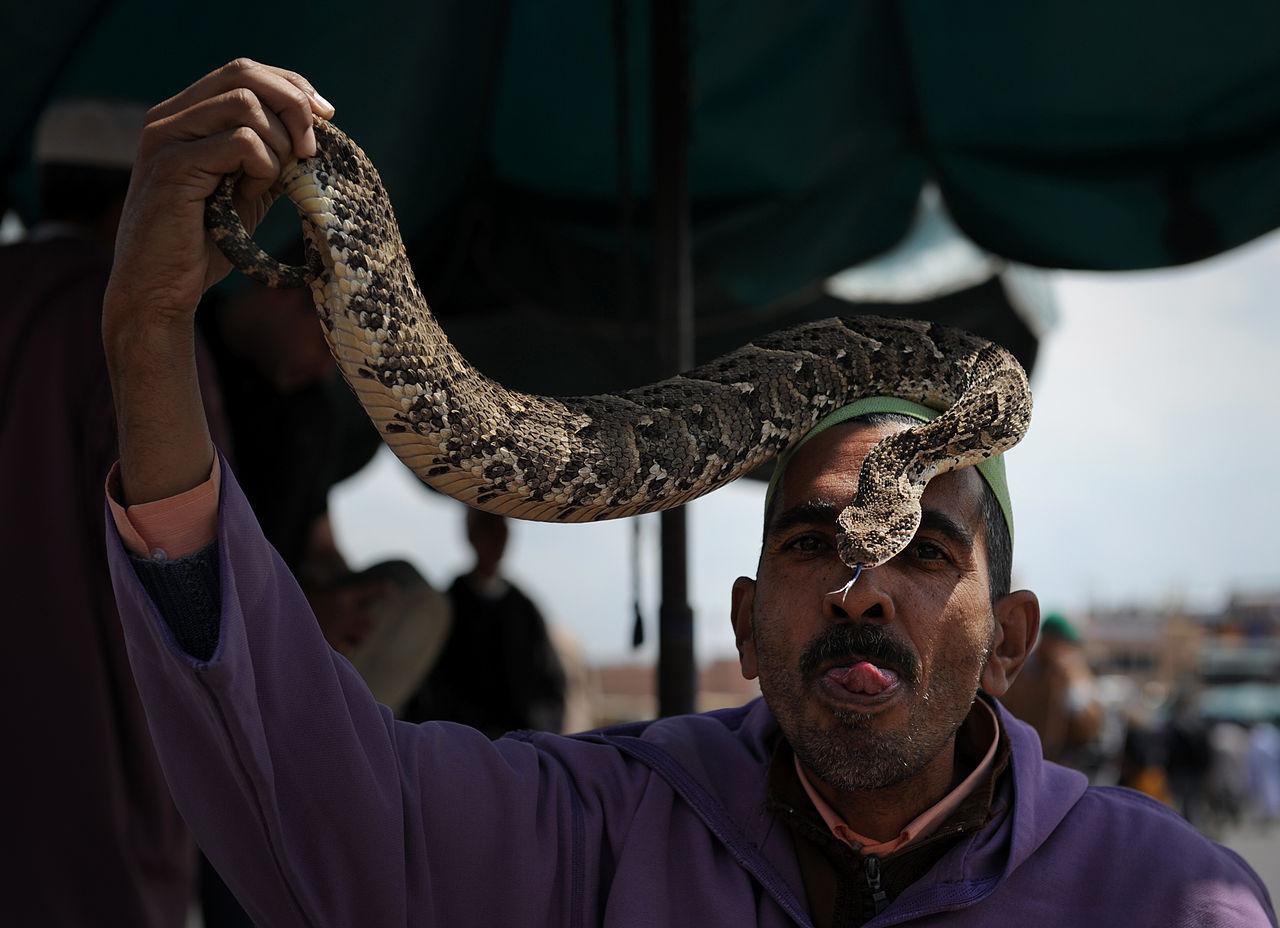 Charmeur de Serpent . Place Jemaa El Fna Marrakech