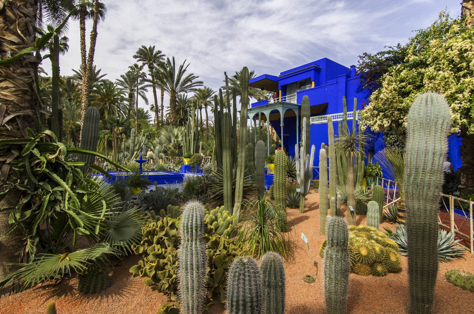 Jardin Majorelle - atelier villa cubiste de l'artiste Peintre jacques Majorelle