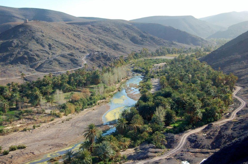 Oasis-de-Fint-Ouarzazate-Maroc